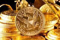 Ulaganje u zlato, klub za ulaganje u programe za zlato